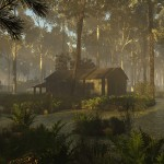 Morgengrauen im Sumpf 2